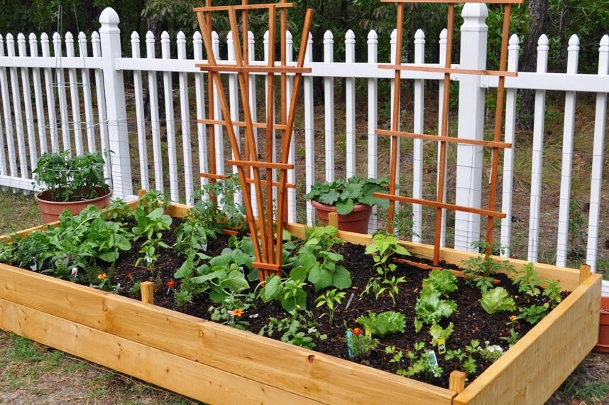 Pdf Lowes Garden Trellis Plans Free