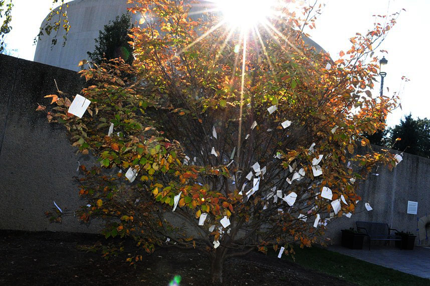 National Wish Tree, Yoko Ono